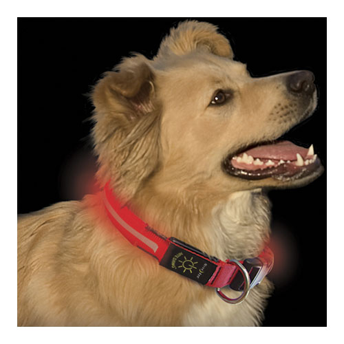 Ошейник светодиодный Nite Ize NiteDawng Led Dog Collar Small Red 25-33 cm (NND-03-10S)